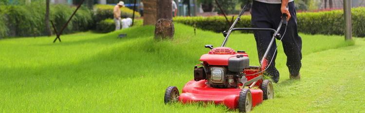 园林机械,上海ce认证机构|欧盟ce认证公司|俄罗斯cu图片